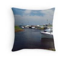 Toney River Throw Pillow