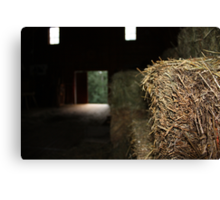 The Barn is Watching You Canvas Print