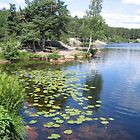Kristiansand lake by Ash Rehn