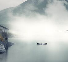 In the mist by Andreas Stridsberg