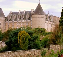 Le Chateau de Rochechouart. by Rusty  Gladdish