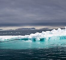 Svalbard Iceberg by Phil Bain