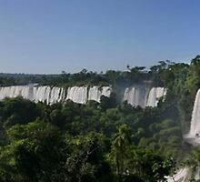 Iguaco Falls - South America by Penny V-P