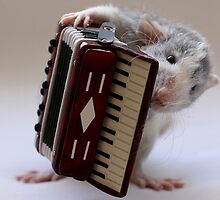 Its not easy being a musician :) by Ellen van Deelen