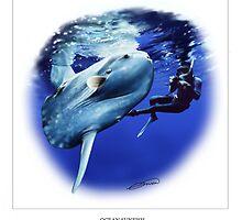 OCEAN SUNFISH 4 by DilettantO