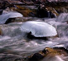 Portobello Ice Caps by Kerri Gallagher