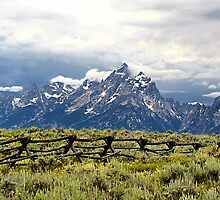 Grand Teton Range by Teresa Zieba