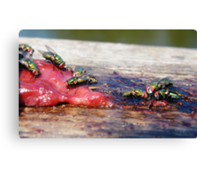 Ugly Subjects Canvas Print