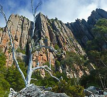 Organ Pipes on Mt Wellington by Chris Cobern