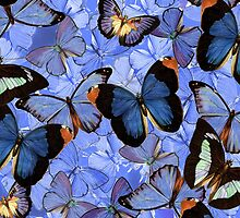 Composition With Echoed Butterflies #3 by Ivana Redwine