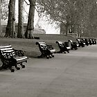 Kensington Park Benches by Whitney Edwards