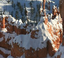 A Frigid Day in Bryce Canyon by Terence Russell