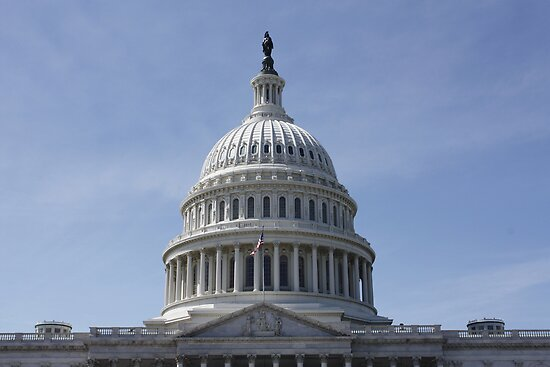 The US Capital Building by AnnDixon