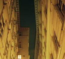 Alleyway Roofline - Vienna, Austria by Eric Cook