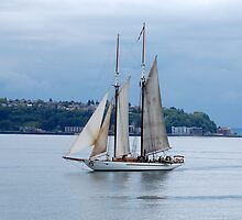 Sailing in Elliot Bay, Seattle by andai