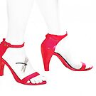 The Red Shoes by Peter Hammer
