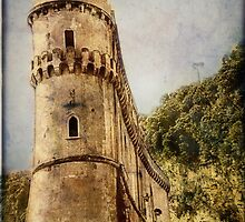 Sorrento Tower by Angie Muccillo