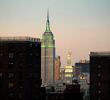 Empire State Building from Brooklyn Bridge by Susan Grissom