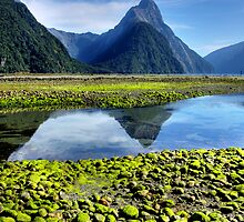 Mitre Peak,- Milford Sound, New Zealand by Wendy  Meder