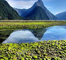 Mitre Peak,- Milford Sound, New Zealand by Wendy  Meder