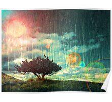 Birch Dreams Poster