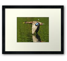 Wing Tip Control Framed Print
