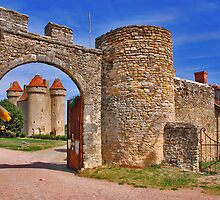 Château de Sarzay  by Adri  Padmos