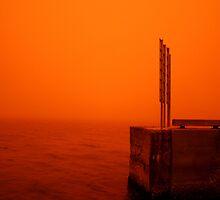 RED by Chris Jallard