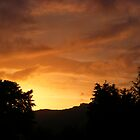 Evening glow by Ian Richardson