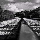 Rail Road by Dean Lichkov