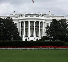 The WHITE HOUSE by AnnDixon