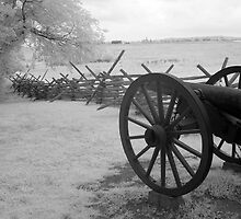 Confederate Lines by Bowman1