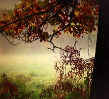 autumn by Cate Davies