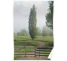 Misty farmland, Northland Poster