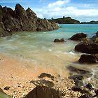 East Coast beach, Northland by Paul Mercer