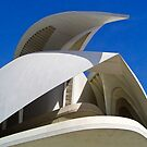 Detail Valencia Opera House by jmhdezhdez