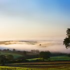 &quot;Devon Mist&quot; by David-J