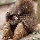 Loving parent by Nick Potts