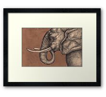 The Elephant in the Room Framed Print