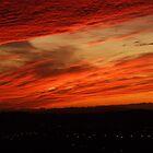 Sunset  by Darron Palmer