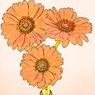 Orange daisies by Sandra O'Connor