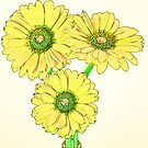 Yellow daisies by Sandra O'Connor