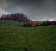 The Autumn scenery  by Antanas