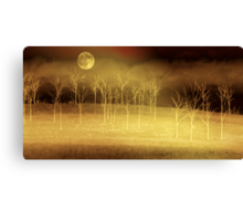 Only at Night Canvas Print