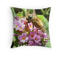 hoverfly on blossom Throw Pillow