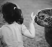 Bye bye turtle by KerrieMcSnap