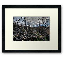 After The Fires Framed Print