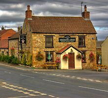 Milbank Arms - Well near Bedale by Trevor Kersley