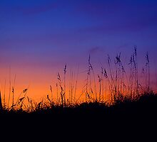Topsail Sunset by Jane Brack