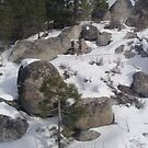 Cold Rocks on a snowy mountain by Carolyn Perrick